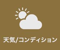天気/コンディション